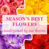 Florist Choice Online