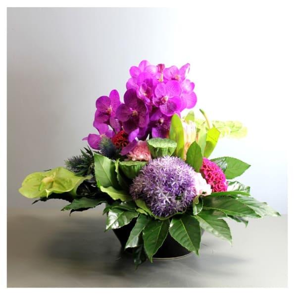 Arrangement of Cut Flowers pink mixed