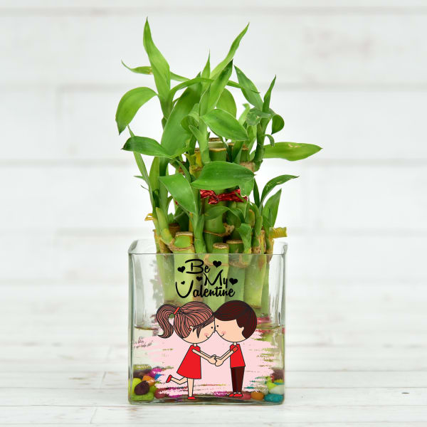 Be My Valentine Customized Pot with Two Layer Lucky Bamboo Plant