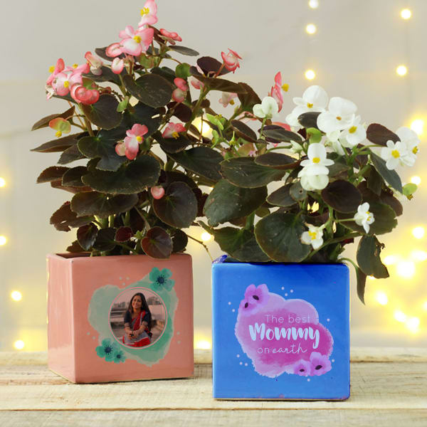 Best Mommy On Earth Planter Set