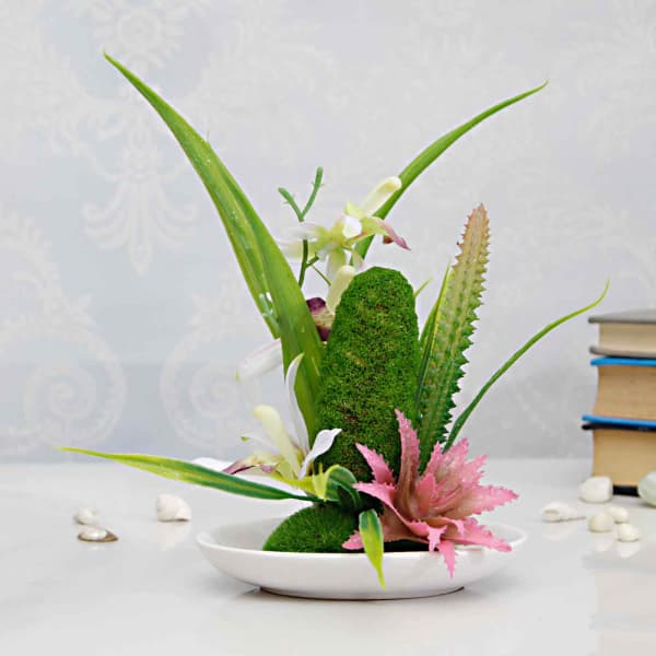 Cactus Plant With Artificial Flowers In A White Flat Bowl