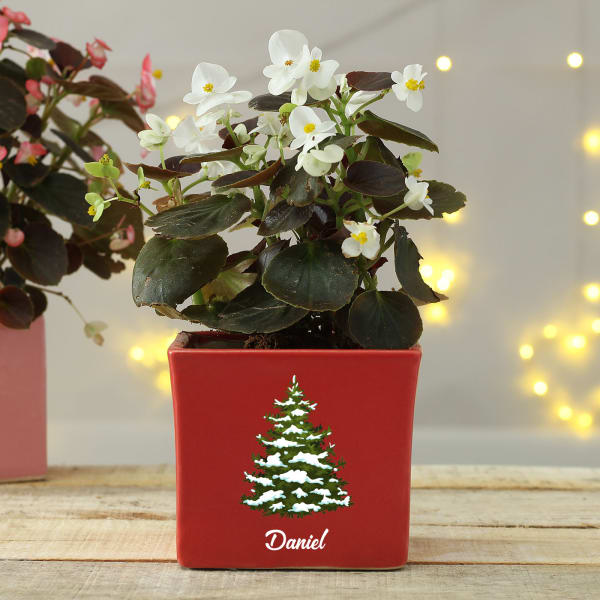 Christmas Themed Personalized Red Planter Pot