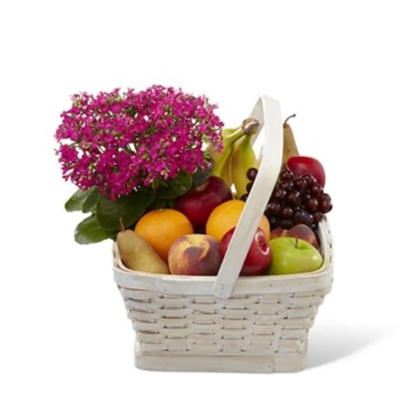 Garden Paradise Basket