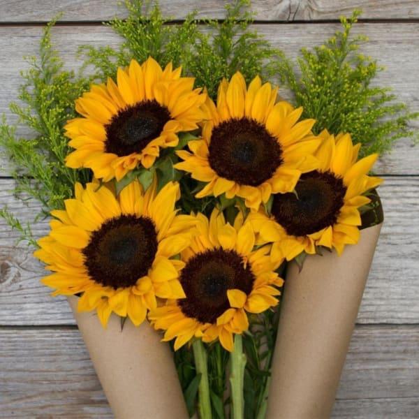 Hello Sunshine - 5 Sunflowers Bouquet
