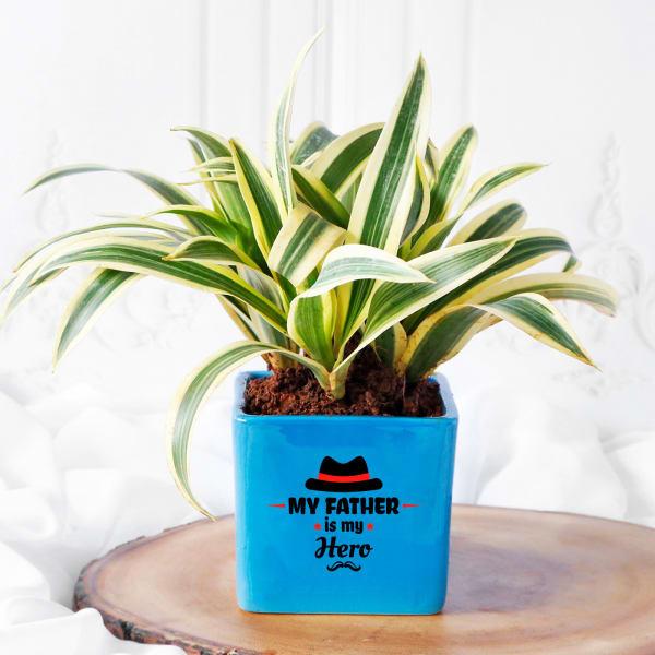 Hero Father Blue Ceramic Planter With Plant