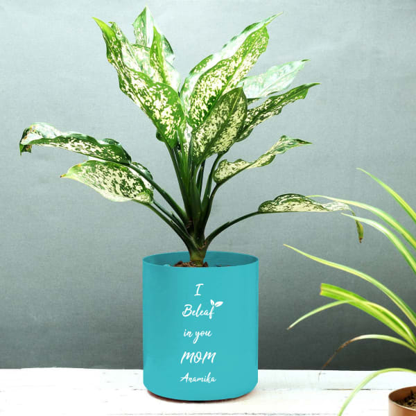 I Beleaf in You Mom Personalized Metal Planter