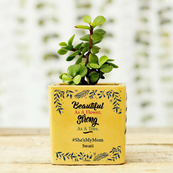 Jade Plant in She's My Mom Personalized Planter