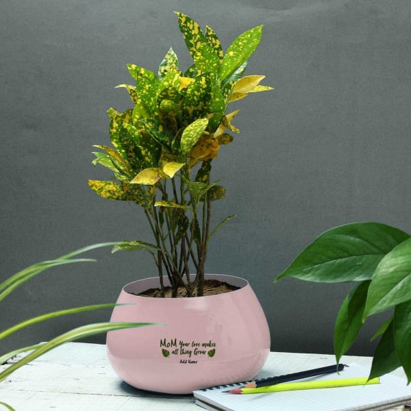 Mom's Love Personalized Metal Planter