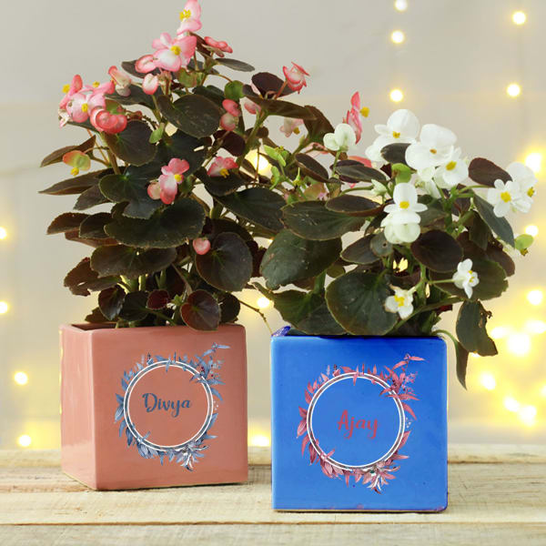 Personalized Ceramic Planters