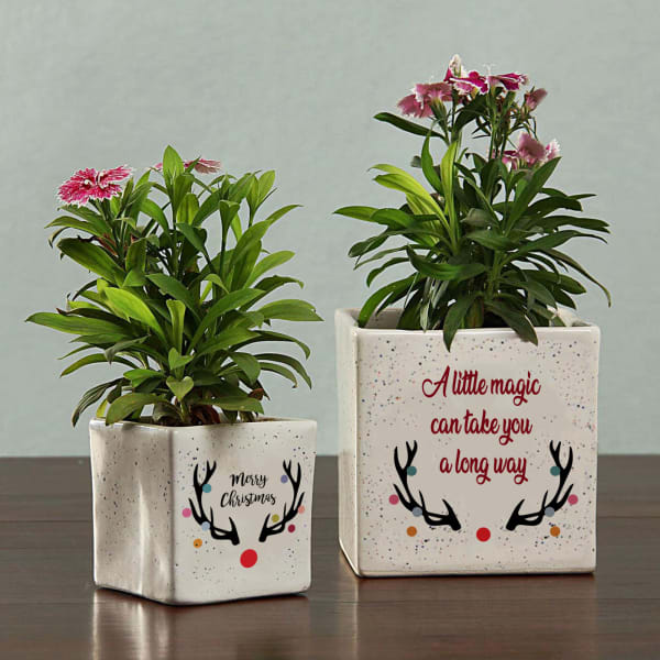 Personalized Merry Christmas Planters