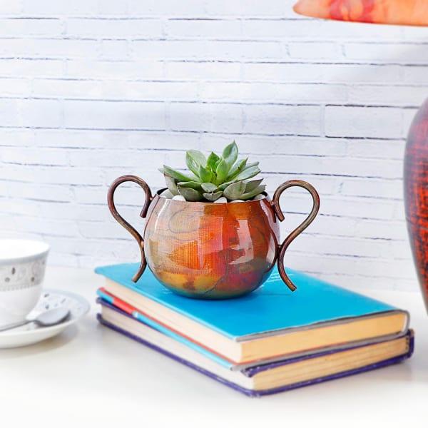 Succulent Plant in Urn shaped Metal Pot