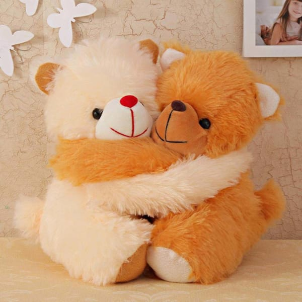 Two Cute Teddies Hugging Soft Toy