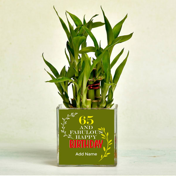 Two Layer Lucky Bamboo in Glass Vase for Birthday