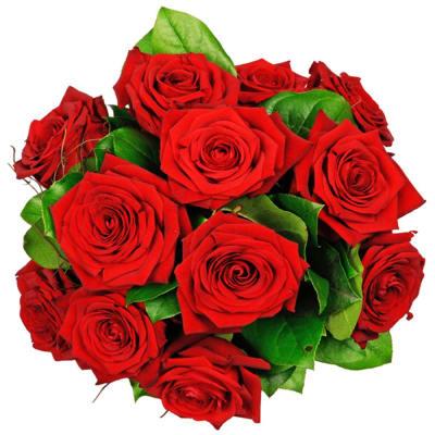 12 red roses -  longstemmed