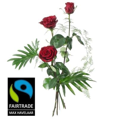 3 Red Fairtrade Max Havelaar-Roses, medium stem with greenery
