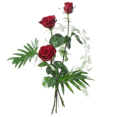 3 Red Roses with greenery