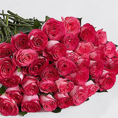 36 Pink Pearl Roses