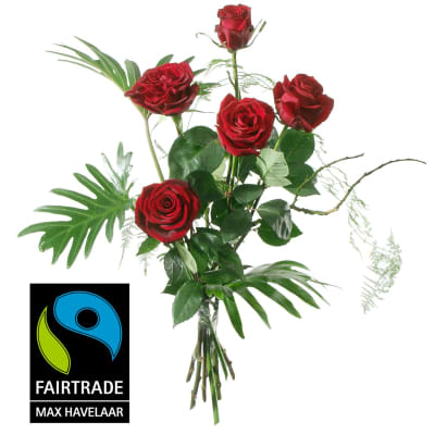 5 Red Fairtrade Max Havelaar-Roses, medium stem with greenery