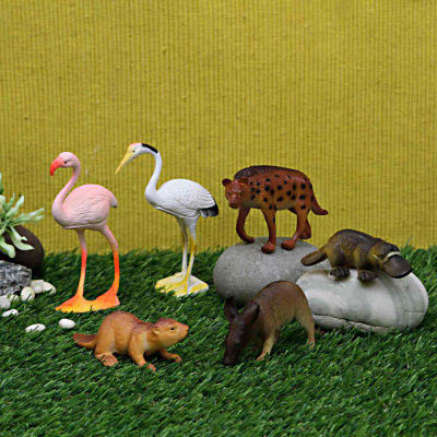 6 Pcs World Animal Set