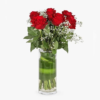 6 RED ROSES AND BABYS BREATH IN A VASE