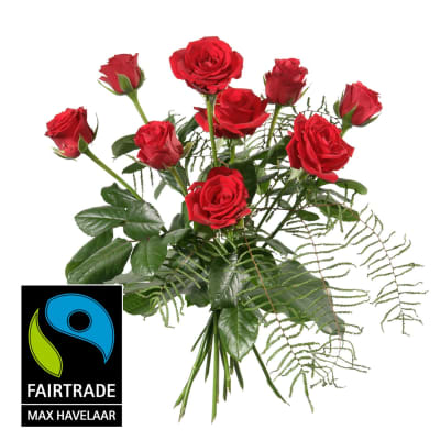9 Red Fairtrade Max Havelaar-Roses, shortstemmed with greenery