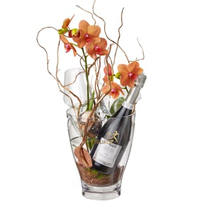 """A Touch of Exotic: Prosecco Albino Armani DOC (75 cl), incl. ice bucket and two """"Connaisseur"""" gl"""