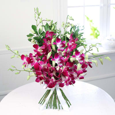 Beautiful 10 Purple Orchids