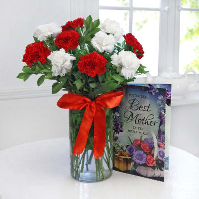 Beautiful 10 Red & White Carnations with Card
