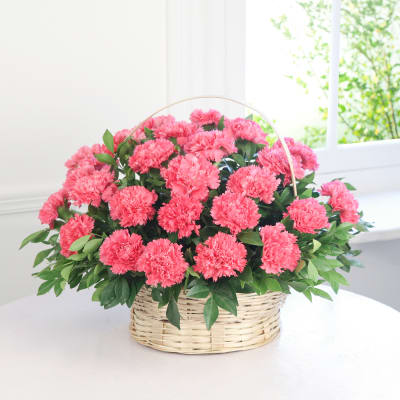 Beautiful 25 Pink Carnations In A Round Basket