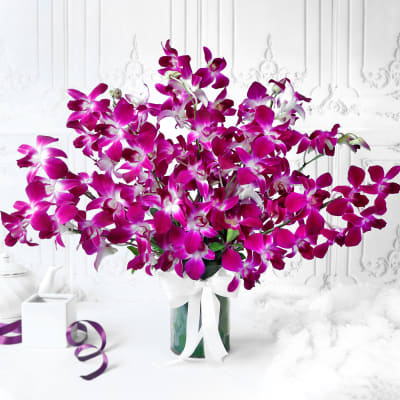 Bouquet of Purple Orchids in Glass vase (10 Stems)