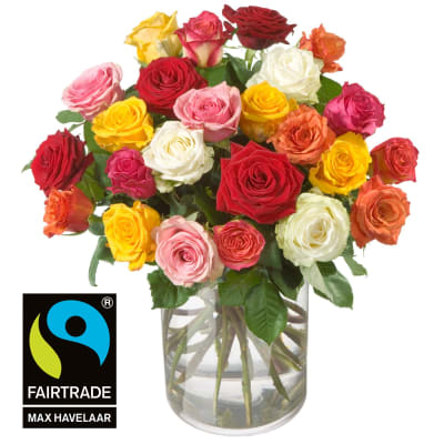 Bouquet of Roses (24 roses) with Fairtrade Max Havelaar-Roses, small blooms