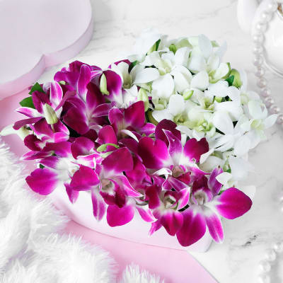 Bouquet of White & Purple Orchids in Heart-shaped Box