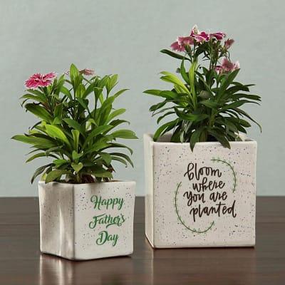 Ceramic Planter Set for Father