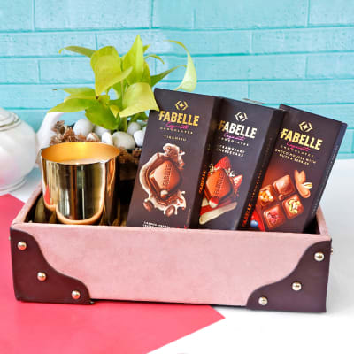 Chocolates & Money Plant with Tin Candle in Tray Hamper