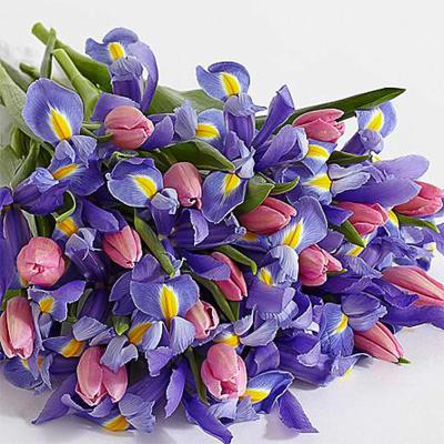 Deluxe Spring Blooms