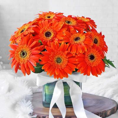 Glass Vase Arrangement of 10 Orange Gerberas