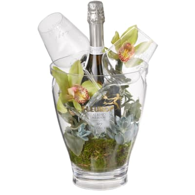 """In Harmony with Nature: Prosecco Albino Armani DOC (75 cl) incl. ice bucket and two """"Connaisseurâ€"""