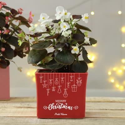 Merry Christmas Personalized Ceramic Planter