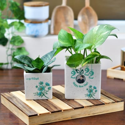 New Year Personalized Planter Pot Set