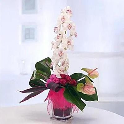 Orchid Surprise Flower Arrangement