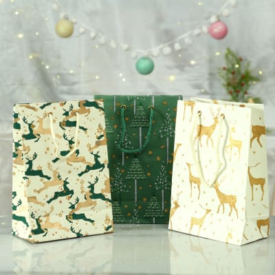 Paper Gift Bags (Set of 3)