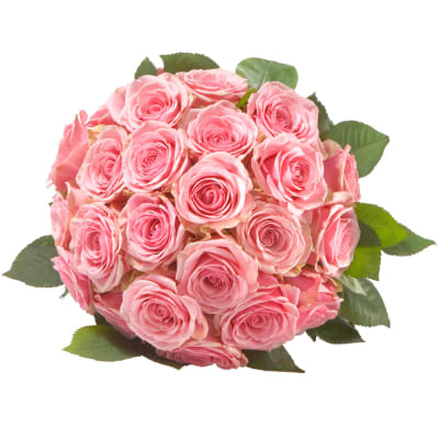 Pearl of Roses in Pink