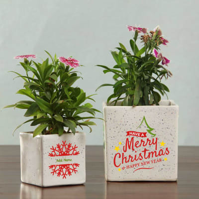 Personalized Set of Ceramic Planters for Christmas & New Year