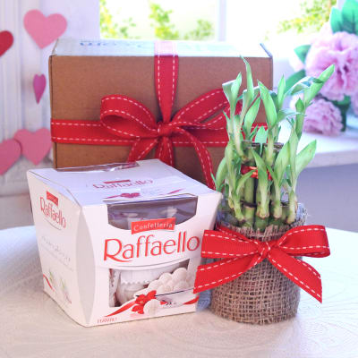 Easter gifts online buy send easter baskets presents for kids raffaello chocolates with bamboo plant in a jute wrap negle Images