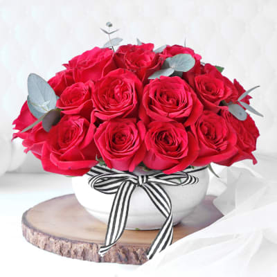 Red Roses in Planter with Ribbon (25 Stems)