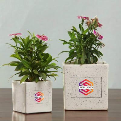 Set of 2 Ceramic Planters - Customized with Logo