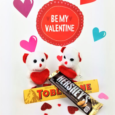 Teddies with Hersheys & Toblerone Chocolate Bar