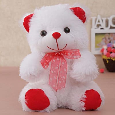 White & Red Teddy Bear for your Loved One