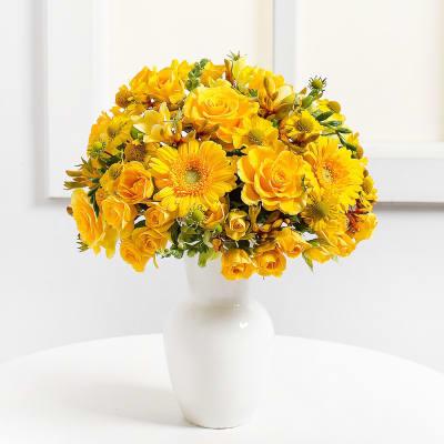 Yellow Harmony