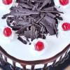 Shop Black Forest Cake (Eggless) (1 Kg)
